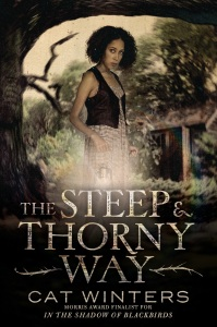 Image result for the steep and thorny way